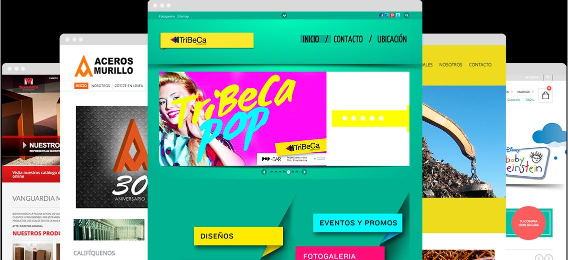 imagen-de-desarrollo-web-profesional